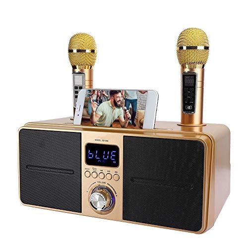 Bewinner1 Kit de KTV Altavoz Karaoke Bluetooth,Equipo de Karaoke con Double Micrófono para Hogar,AUX USB Máquina Multipropósito de Video Universal para Telefono/Tablet/PC,2 Micrófonos Karaoke(Oro)