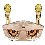 Bluetoothカラオケマイク ホームKTV ワイヤレスマイクシステム 2ハンドヘルドマイク AUX TFカード/Uディスク カラオケ歌うマシン 高音質カラオケ機器 ポータブルスピーカー プロフェッショナルホームKTVセット (ゴールデン)