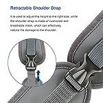 BIGWING Style Pet Sling Carrier for Dog Cat Pets Travel Shoulder Bags (L, Blue) 15