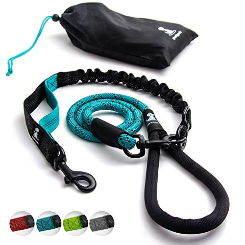 Heavy Duty Rope Bungee Leash for Large and Medium Dogs with Anti-Pull for Shock Absorption - No Slip Reflective Leash for Outside (Teal)