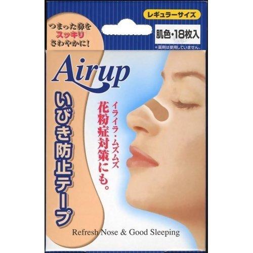 Breeze Light Nasal Cavity Extension - Air Up Regular Size 18 Sheet (Harajuku Culture Pack)