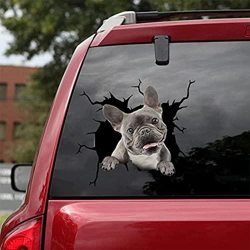 TEANQIkejitop Pegatina de coche, linda pegatina de vinilo francesa, calcomanía de mascota, familia, perro, regalo de mascota
