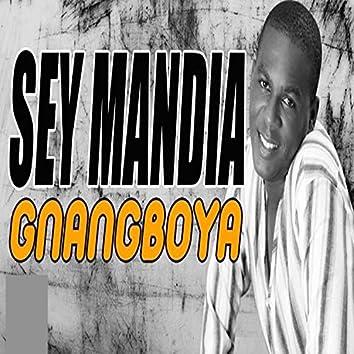 Gnangboya