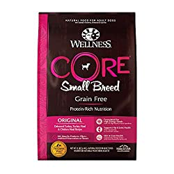Wellness Core Natural - Best Dog Food for Yorkies