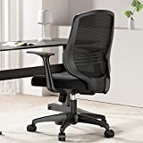 Hbada Home Desk Chair Mesh Office Chair with Arms and Adjustable Height, Black
