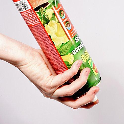 COMPO Zierpflanzen-Spray, Bekämpfung von Schädlingen an Zierpflanzen - 6