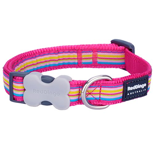 Red Dingo Hundehalsband, Gestreift, Medium, Hot Pink