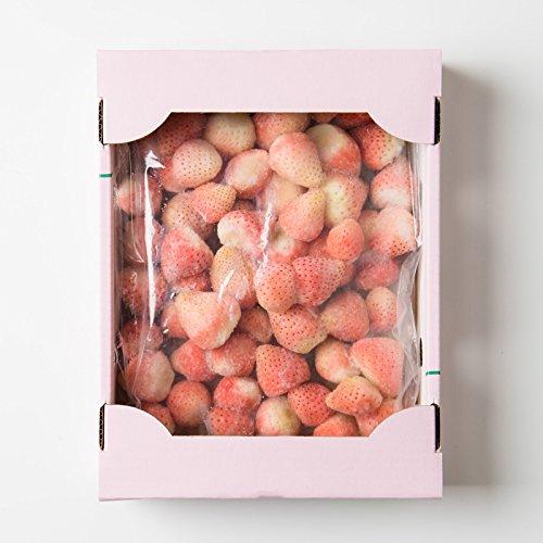 株式会社イチゴラス 希少 冷凍 白いちご 淡雪 熊本県産〔1kg×1パック〕