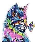 WISKALON Pintar por Numeros 40cm x 50cm Marco Pintura para Adultos y Niños con 3X Lupa, Acrílica Pintar y Pinceles - Gato y Mariposa (sin Marco)