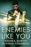 Enemies Like You (Enemies with Benefits Series)