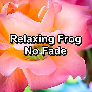 Relaxing Frog No Fade