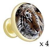 Animal tigre Bouton de tiroir rond or en métal massif avec verre pour la porte du meuble de cuisine commode armoire penderie tirer la poignée (4 pcs)