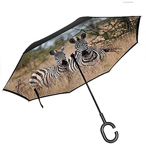Rückregenschirm, Tier-Dekor Kenia mit Zebras in den hohen Büschen, welche die Kamera betrachten, streifte einzigartiges Tier