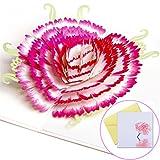 YIHAO Geburtstagskarte für Mutter 3D Pop Up Grußkarte mit Nelke Muttertagskarte mit Umschlag 3D Geburtstagskarte für Mama besonderes Geschenk