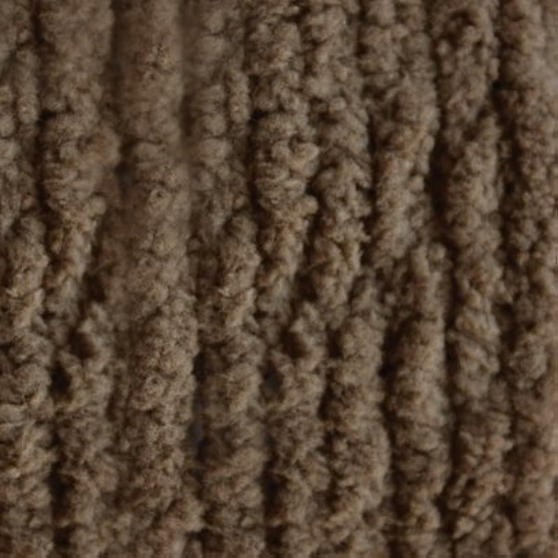 Bernat 16120000029 Blanket SB Yarn, Taupe