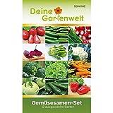 Gemüsesortiment | Gemüse-Set mit 12 Sorten Samen | Gemüsesamen-Sortiment | Saatgut für den Gemüsegarten