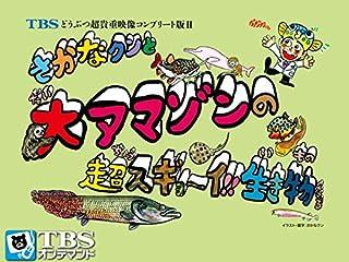 さかなクンと大アマゾンの超スギョ〜イ!!生き物たち【TBSオンデマンド】...