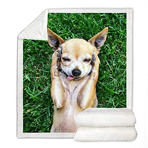Lindo manta de sherpa Chihuahua para niños, colcha fina en la cama, sofá, dormitorio, manta de forro polar, 150 x 200 cm