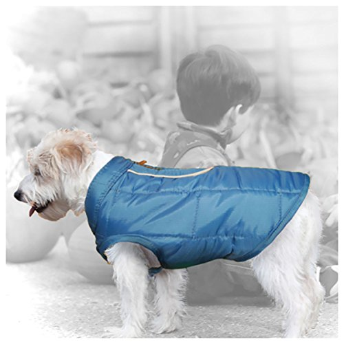 Kurgo Dog Jacket | Reversible Winter Jacket for Dogs | Pet Coat for Hiking | Water Resistant | Reflective | Lightweight | Wear with Harness | Athletic...