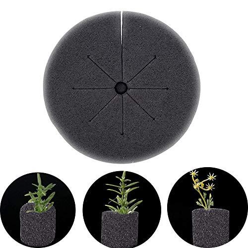 NAWXC Circulor Garden Clone Collars, Seed Growing Media Schwämme, Seed Growing Media Schwämme, Schwammblock Für 2 Zoll Net Pots Hydroponic Plant Disk 120 Stück