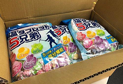 【1ケースまとめ買い】 ランドアート 塩タブレット5兄弟 1ケース(530g×10袋入、約1980粒)