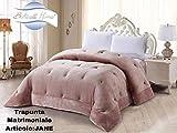 BOTTICELLI HOME Trapunta Matrimoniale Invernale Jane 260x260 cm (Cipria)