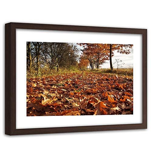 Feeby Imagen Enmarcado marrón XXL Naturaleza Arte