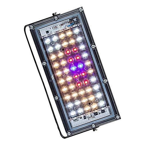 XINRISHENG 30W Vollspektrum-LED-Anlage-Füll-Licht-Gemüse-Gewächshaus-Pflanzenlampe LED-Pflanzenwachstum-Licht
