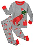 Family Feeling Little Boys Girls Long Sleeve Christmas Pajamas Sets 100% Cotton Pyjamas Toddler Kids Pjs Size 4T Dinosaur