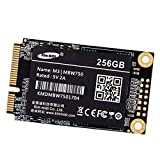 IPOTCH Disco Duro Interno Sata SSD con Interfaz MSATA de 256 GB Y 1,8 Pulgadas