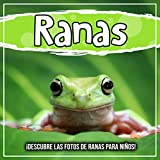 Ranas: ¡Descubre las fotos de ranas para niños!