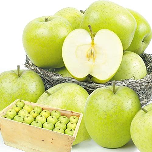 国華園 りんご 青森産 ご家庭用 王林 木箱 約20�s 1箱 食品