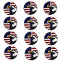 FINGER TEN Golf Ball Markers Assorted Patterns Value 12 Pack Gift, Mark Golf Hat Clip Divot Tool Accessories for Men Women Kids (Eagle Ball Marker)