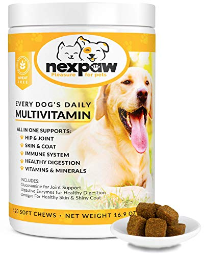 Top 10 best selling list for supplement for immune system in dogs