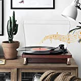 Aousthop Audiology Gramaphones Record Player,3-Speed Bluetooth Input Output,3.5mm Aux Headphone Jack MP3 Recording Automatic Tone Pitch,Speakers Turntable Convert Vinyl Records to Digital Files