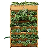 Factory Seconds Vertical Garden 32W x 45H x 9'D - Assembled