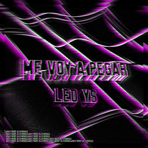 Leo YS