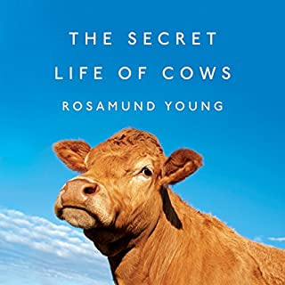 The Secret Life of Cows                   Written by:                                                                                                                                 Rosamund Young                               Narrated by:                                                                                                                                 Rosamund Young                      Length: 3 hrs and 40 mins     Not rated yet     Overall 0.0