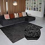 Carpet Studio Alfombra Suave al Tacto 115x170cm, Salón/Cocina/Dormitorio/Pasillo, Decoracion Habitacion, Fácil de Mantener, Basalt