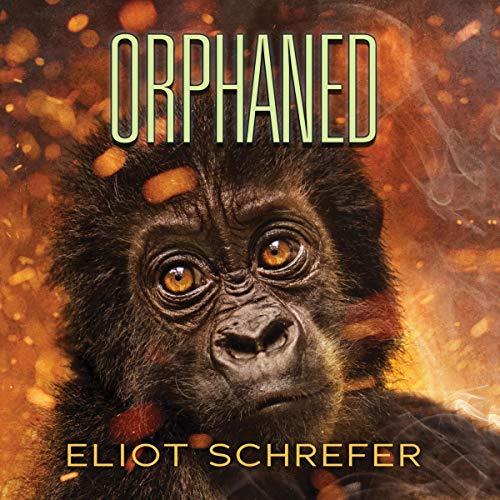 Orphaned audiobook cover art