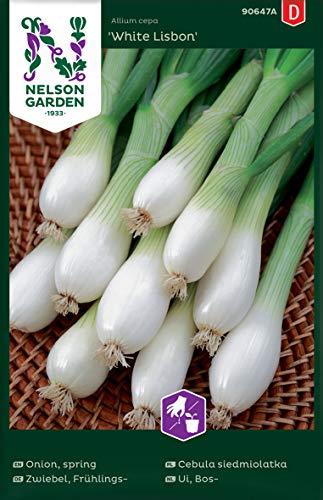 Frühlingszwiebeln Samen White Lisbon - Nelson Garden Saatgut für Gemüse - Zwiebel Samen Lauchzwiebeln (450 Stück) (Einzelpackung)