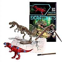 子供のための恐竜3d化石発掘キット6-12スケルトンパズルあらゆる年齢の愛好家のための付属ツールを備えた骨のための現実的な化石,Tyrannosaurus