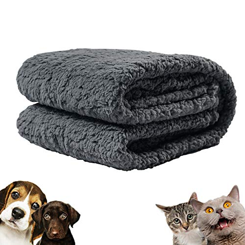 softan Manta para Mascotas Perros Gatos, Manta Lavable de Sherpa Super Suave y Cálida para Cama, Sofá, Colchoneta de Animales,60x80cm,Gris