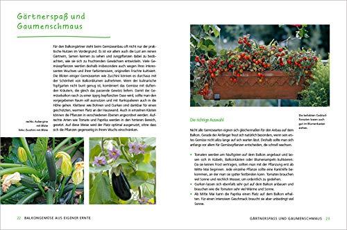 Alles Bio vom Balkon. Obst, Gemüse und Kräuter selber ziehen.: Große Ernten auf kleinster Fläche mit den richtigen Sorten und Pflanzgefäßen, ... Alles für den nachhaltigen Naschbalkon - 5