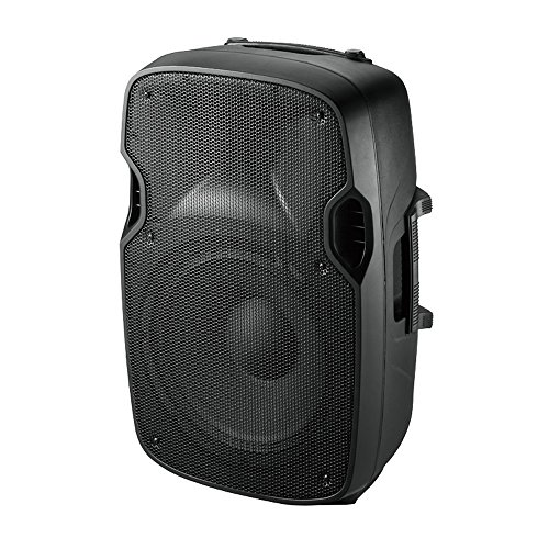 Ibiza XTK8 - Bafles de sonido con ABS pasivo, 8
