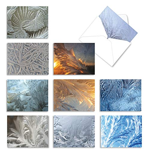 The Best Card Company - 10 Merry Christmas Cards Bulk - Festive Holiday Patterns, Boxed Card Assortment (4 x 5.12 Inch) (Not Foil or Textured) - Ice Feathers M2283