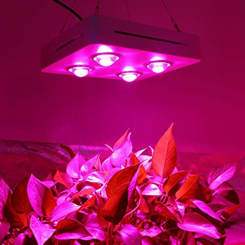 CF Grow 600W LED Cob Grow Light
