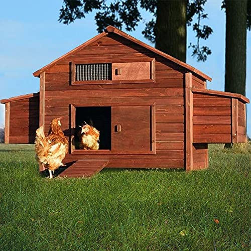 Poulailler en Bois pour Jardin extérieure Cage Canard...