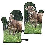 ZVEZVI Guantes de Horno, Real Swiss Cow Brown Home Extreme Resistente al Calor 2 Piezas Soporte de Olla de microondas Guantes de Horno para Cocina BBQ Hornear 11 x 5,9 Pulgadas