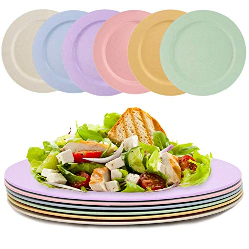 DeeCoo Set of 6 Lightweight Unbreakable Wheat Straw Plates, 10 Inch Flat Dinner Plates, Dishwasher & Microwave Safe - Reusable, Non-toxin, Eco-Friendly & BPA Free, Healthy for Kids, Adults